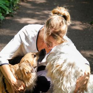 spiegelcoaching met honden